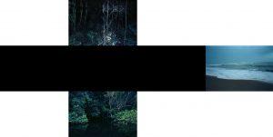Jean-Louis Sarrans, La tombée du jour, série Le jardin sans maître, 2013, courtesy Galerie Binome édition de 5 (+2EA) - 97x145 cm tirage pigmentaire, encadrement boîte blanc, verre anti-reflet