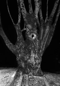 Anaïs Boudot, sans titre, série La noche oscura, 2017, courtesy Galerie Binome, projet de résidence Casa de Velazquez 2017